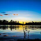 Fool Hollow Lake Sunset by George I. Davidson