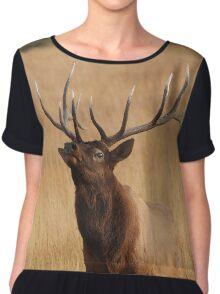 Bull Elk Charging Chiffon Top
