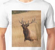 Bull Elk Charging Unisex T-Shirt