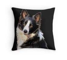 KLIPPIES, ONE OF MY SIX BORDERCOLLIES Throw Pillow