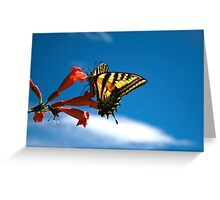 Butterfly Sky Greeting Card