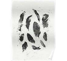 Feathers BW Poster