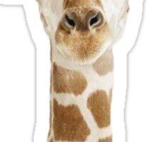 Fabulous giraffe Sticker