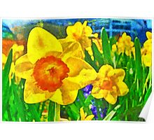 Extreme Daffodil Poster