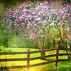 May Mood by Nadya Johnson