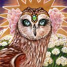 Angelica princess barn owl by MoonSpiral