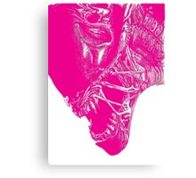 Untitled Pink Canvas Print