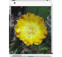 Yellow Cactus Flower, Jinja, Uganda iPad Case/Skin