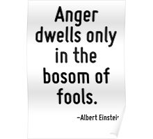 Anger dwells only in the bosom of fools. Poster