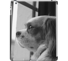 Kings Charles iPad Case/Skin