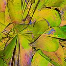 House Plant Abstract by Joy  Rector