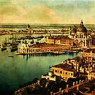 Venice Observed by Sarah Vernon