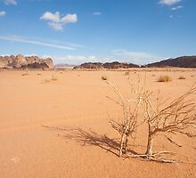 Desert of Wadi Rum by PhotoBilbo