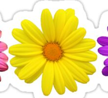 Three Little Flowers Sticker