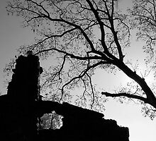Stone Chimney Silhouette by debidabble