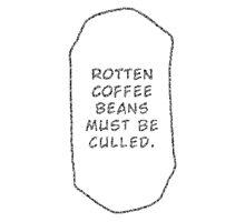 Rotten Coffee Beans - Black Photographic Print