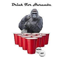 Drink for Harambe Photographic Print