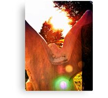 Wind and Flame Canvas Print