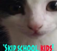 Sophia The Cat # 4 [Tex's Owner] Sticker
