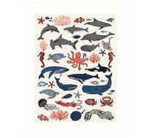 Ocean Animals by Andrea Lauren Art Print