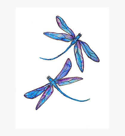 Dragonfly Dance Photographic Print