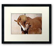 A Flare of love Framed Print