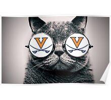 UVA Cat Poster