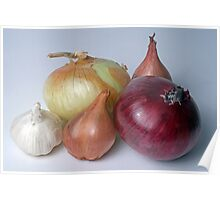 A Family Allium Poster