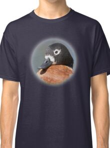 Chestnut-breasted Shelduck Classic T-Shirt