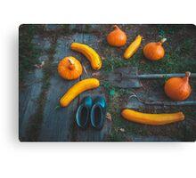 Harvest of local rural farmer. Halloween pumpkins. Village landscape. Canvas Print