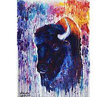 Buffalo Spirit Photographic Print