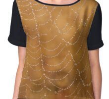 Nature's play: spider's web Chiffon Top