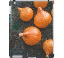 Harvest of local rural farmer. Halloween pumkings. Village. iPad Case/Skin