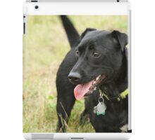 Baxter iPad Case/Skin