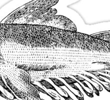 Whale fish - Medieval Bestiary Sticker