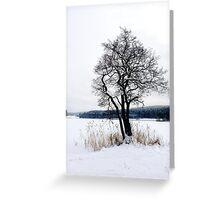 Winter mood Greeting Card
