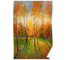 Sunset in the autumn fores Poster