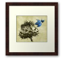A Blue Melody Framed Print