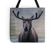 Friendly Moose Tote Bag
