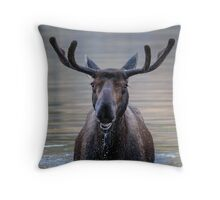 Friendly Moose Throw Pillow