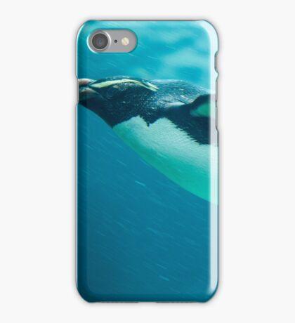 Fiordland Penguin iPhone Case/Skin
