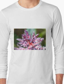 colored flowers in spring Long Sleeve T-Shirt