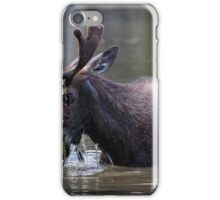Munching Moose iPhone Case/Skin