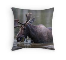 Munching Moose Throw Pillow