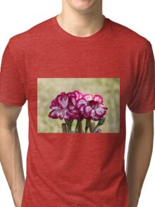 colored flowers in spring Tri-blend T-Shirt
