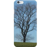 Tree taken early spring in Yorkshire iPhone Case/Skin