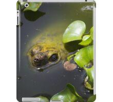 Camo Turtle At Amaru iPad Case/Skin