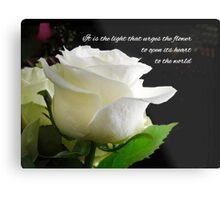 It is the light that urges the flower to open its heart to the world. Metal Print