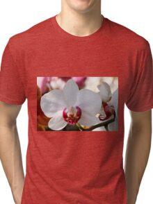 orchid bloom Tri-blend T-Shirt