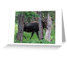 Moose in the Woods Greeting Card
